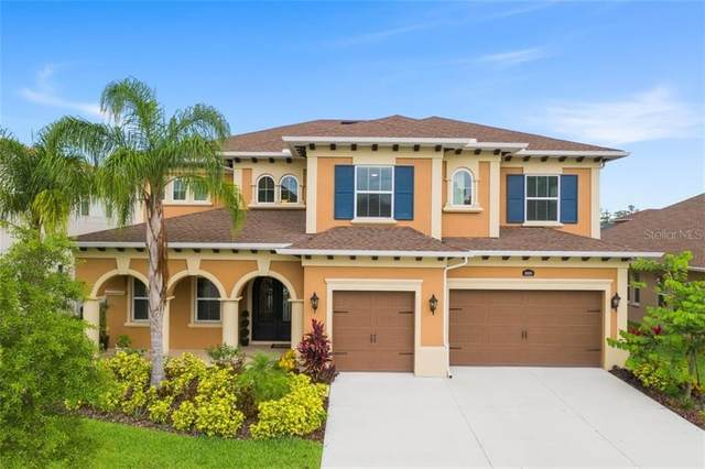18024 Woodland View Drive, Lutz, FL 33548 (MLS #T3246879) :: Pepine Realty