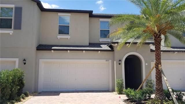 6812 Via Perloso Court, Tampa, FL 33625 (MLS #T3247709) :: Bridge Realty Group