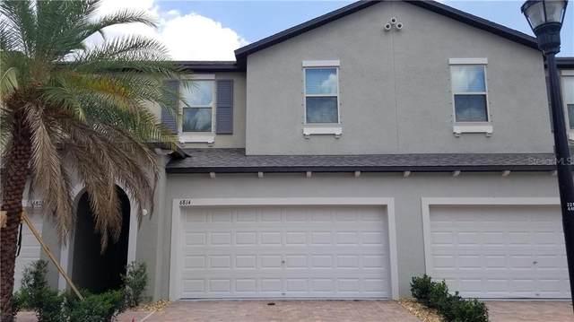 6814 Via Perloso Court, Tampa, FL 33625 (MLS #T3247712) :: Bridge Realty Group