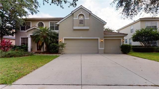 18006 Avalon Lane, Tampa, FL 33647 (MLS #T3248857) :: Team Bohannon Keller Williams, Tampa Properties