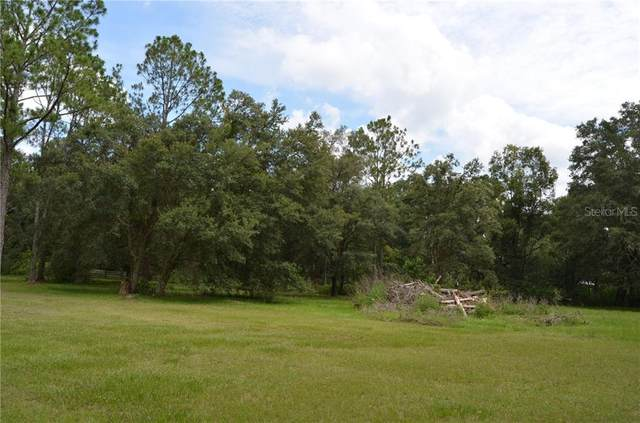 0 Palamino Lake Drive, Dade City, FL 33523 (MLS #T3249812) :: Pepine Realty