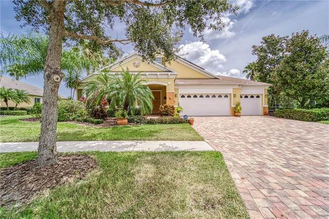 5410 Sandy Shell Drive, Apollo Beach, FL 33572 (MLS #T3250823) :: Your Florida House Team