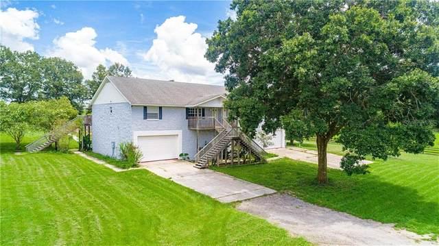 21308 Trilby Cemetery Road, Dade City, FL 33523 (MLS #T3250917) :: Team Bohannon Keller Williams, Tampa Properties