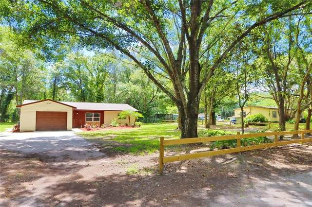 1824 Bronson Place, Odessa, FL 33556 (MLS #T3250982) :: GO Realty