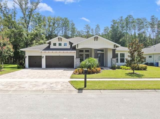 4006 Cove Lake Place, Land O Lakes, FL 34639 (MLS #T3251043) :: Team Bohannon Keller Williams, Tampa Properties
