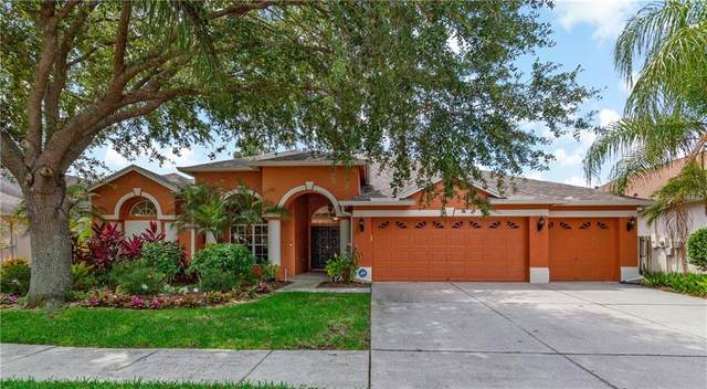 18103 Royal Forest Drive, Tampa, FL 33647 (MLS #T3251210) :: Team Bohannon Keller Williams, Tampa Properties