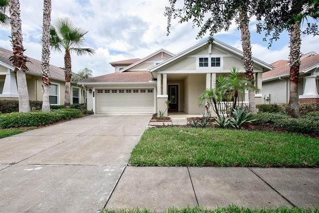 20128 Bending Creek Place, Tampa, FL 33647 (MLS #T3251823) :: Team Bohannon Keller Williams, Tampa Properties