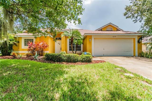 3433 Silver Meadow Way, Plant City, FL 33566 (MLS #T3252012) :: Medway Realty