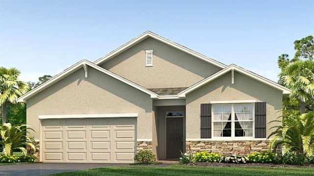 2432 Knight Island Drive, Brandon, FL 33511 (MLS #T3252627) :: Griffin Group