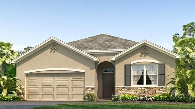 2436 Knight Island Drive, Brandon, FL 33511 (MLS #T3252629) :: Griffin Group