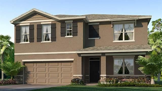 2438 Knight Island Drive, Brandon, FL 33511 (MLS #T3252638) :: Team Bohannon Keller Williams, Tampa Properties