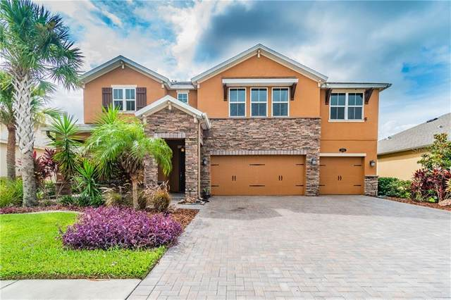 1884 Fox Grape Loop, Lutz, FL 33558 (MLS #T3253297) :: Florida Real Estate Sellers at Keller Williams Realty