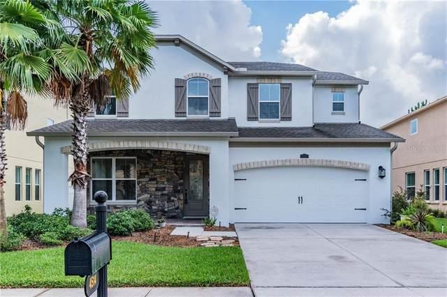 4514 Vermillion Sky Drive, Wesley Chapel, FL 33544 (MLS #T3253459) :: Team Bohannon Keller Williams, Tampa Properties