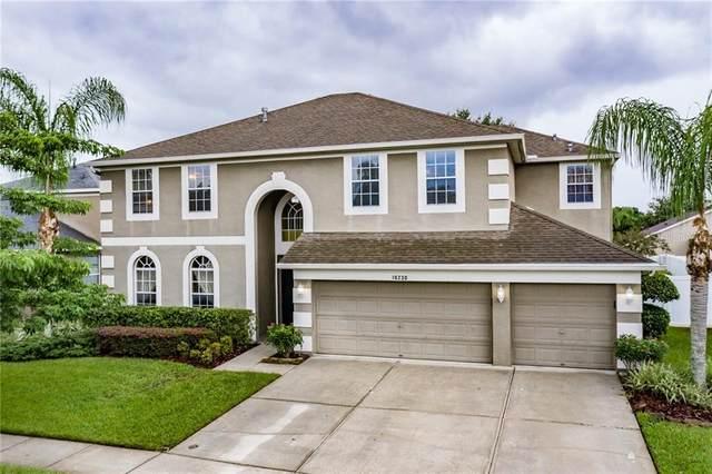 10230 Meadow Crossing Drive, Tampa, FL 33647 (MLS #T3255489) :: Dalton Wade Real Estate Group