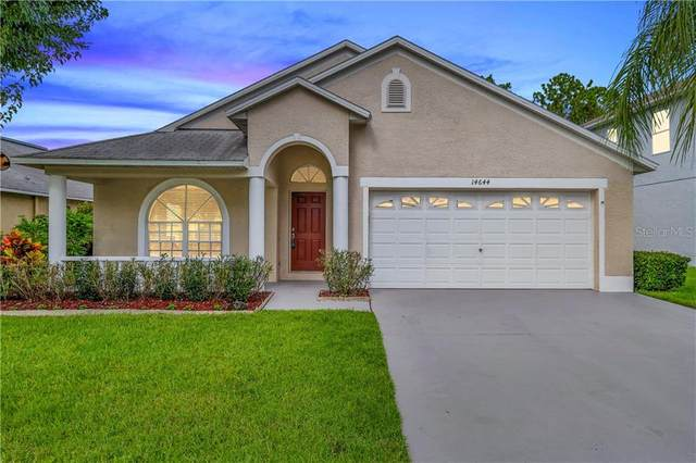 14644 Corkwood Drive, Tampa, FL 33626 (MLS #T3255617) :: Griffin Group