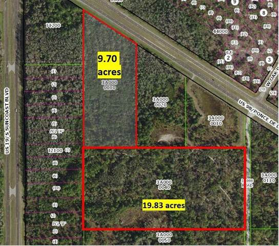 7064 W Ponce De Leon Boulevard, Homosassa, FL 34446 (MLS #T3256020) :: Bustamante Real Estate