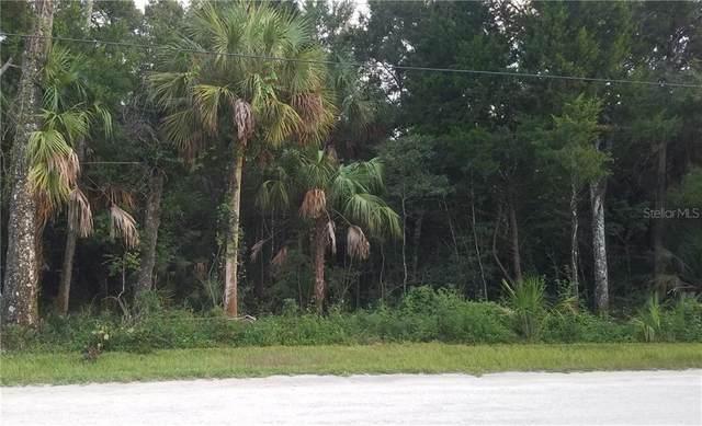 11054 W Rockhaven Lane, Homosassa, FL 34448 (MLS #T3256108) :: Griffin Group