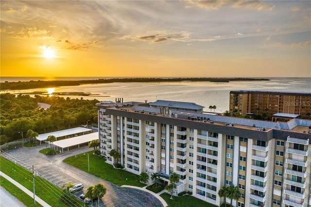 9 Forbes Place #612, Dunedin, FL 34698 (MLS #T3256984) :: Delta Realty Int