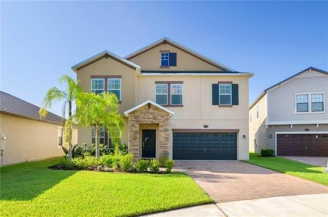 19470 Paddock View Drive, Tampa, FL 33647 (MLS #T3257455) :: Dalton Wade Real Estate Group