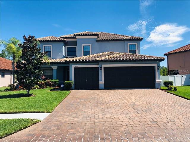 19217 Umberland Place, Land O Lakes, FL 34638 (MLS #T3258098) :: Baird Realty Group