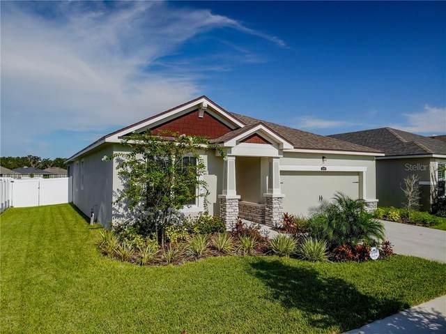13509 Texas Sage Place, Riverview, FL 33579 (MLS #T3258220) :: Premier Home Experts