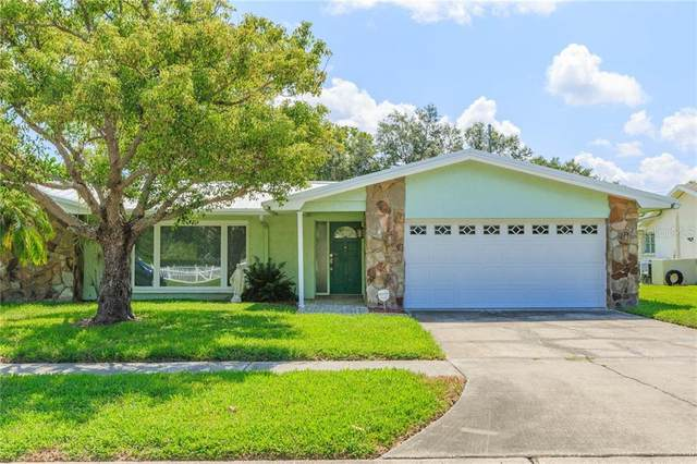 1912 Sandpiper Drive, Clearwater, FL 33764 (MLS #T3258409) :: Griffin Group
