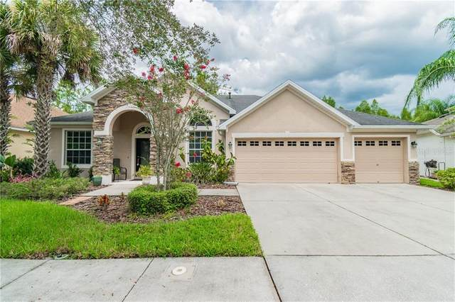 16153 Colchester Palms Drive, Tampa, FL 33647 (MLS #T3258537) :: Premier Home Experts