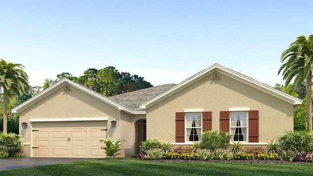 3854 SE 97TH Lane, Belleview, FL 34420 (MLS #T3258782) :: The Figueroa Team