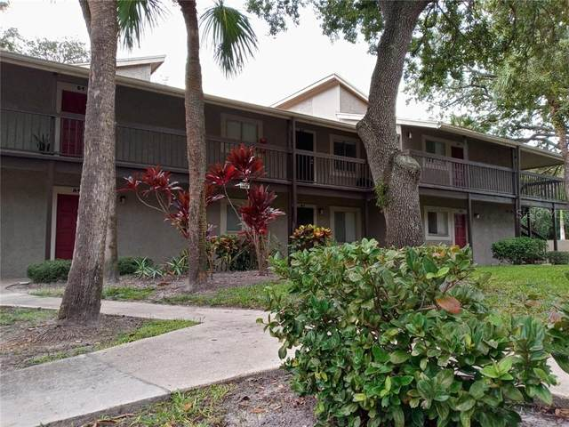 6347 Newtown Circle 47A2, Tampa, FL 33615 (MLS #T3259911) :: Your Florida House Team