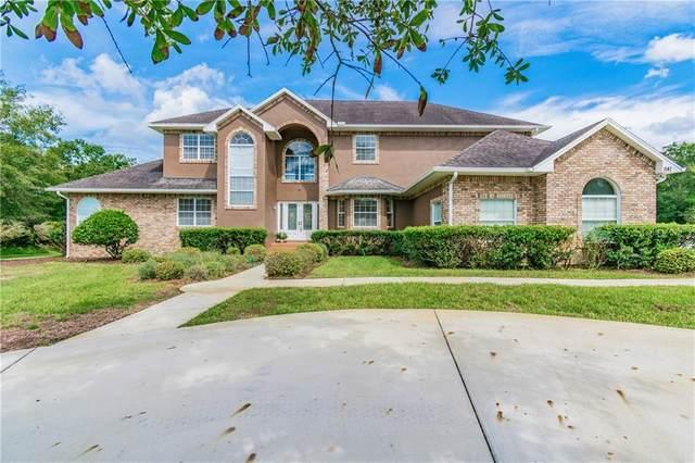 1141 Oak Meadow Point, New Port Richey, FL 34655 (MLS #T3260572) :: Griffin Group