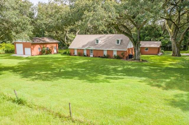 8614 Wire Road, Zephyrhills, FL 33540 (MLS #T3260971) :: Rabell Realty Group