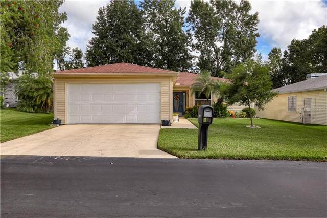 29211 Princeville Drive, San Antonio, FL 33576 (MLS #T3261010) :: Delgado Home Team at Keller Williams