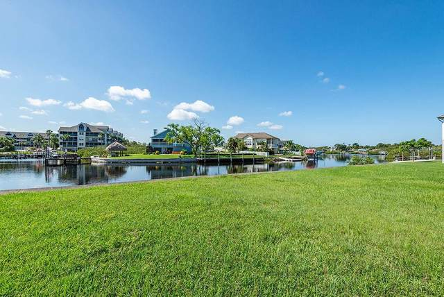Elisabethan Lane, New Port Richey, FL 34652 (MLS #T3262445) :: Rabell Realty Group