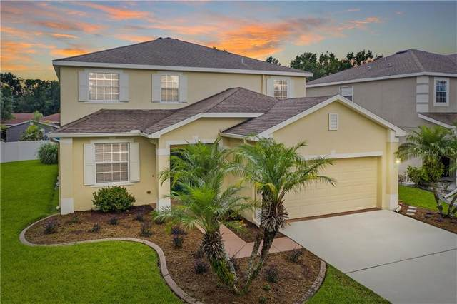 8810 N River Road, Tampa, FL 33635 (MLS #T3262826) :: Frankenstein Home Team
