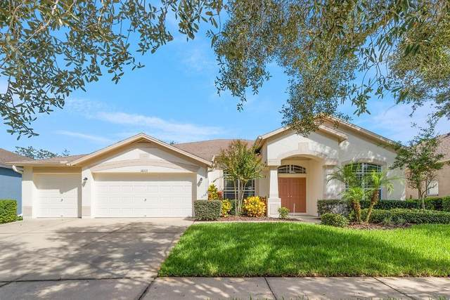 16113 Bridgepark Drive, Lithia, FL 33547 (MLS #T3263158) :: Griffin Group