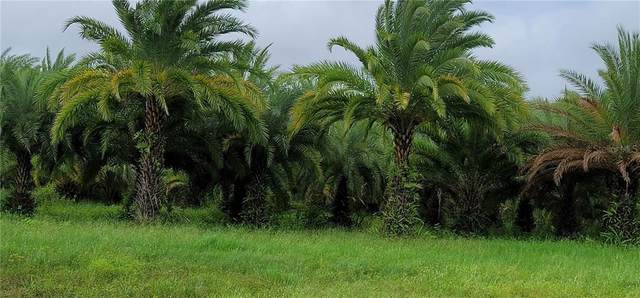 2715 Jim Johnson Road, Plant City, FL 33566 (MLS #T3264355) :: Team Buky