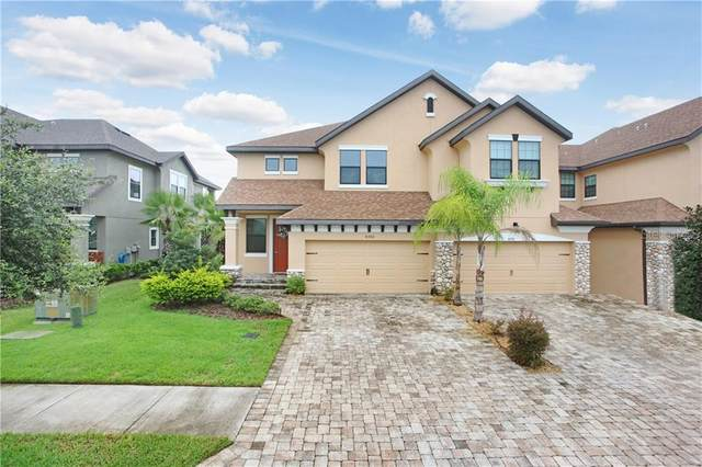 4782 Wandering Way, Wesley Chapel, FL 33544 (MLS #T3264521) :: Zarghami Group