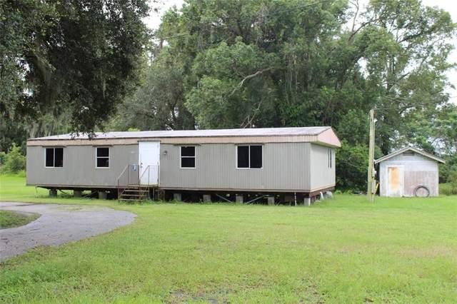 2715 E Trapnell Road, Plant City, FL 33566 (MLS #T3264777) :: The Heidi Schrock Team