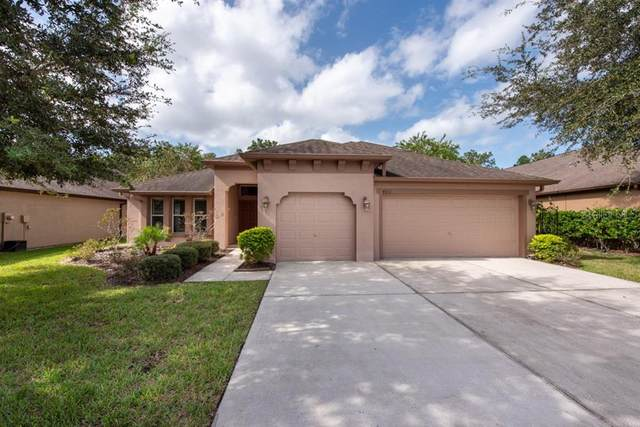 4811 Diamonds Palm Loop, Wesley Chapel, FL 33543 (MLS #T3265270) :: The Duncan Duo Team