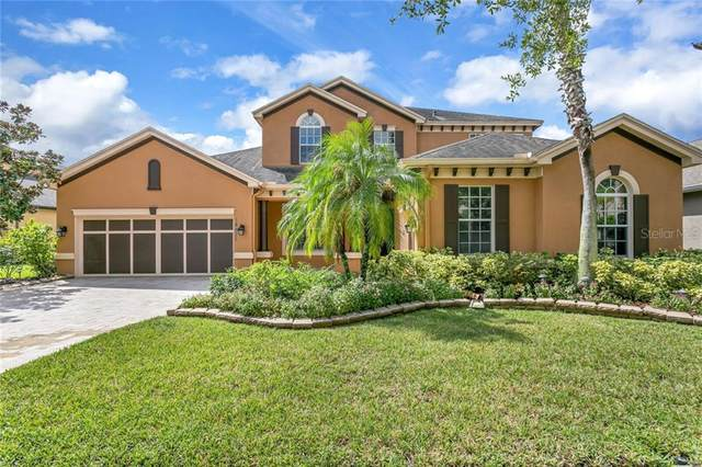 14822 Tudor Chase Drive, Tampa, FL 33626 (MLS #T3265286) :: Team Bohannon Keller Williams, Tampa Properties