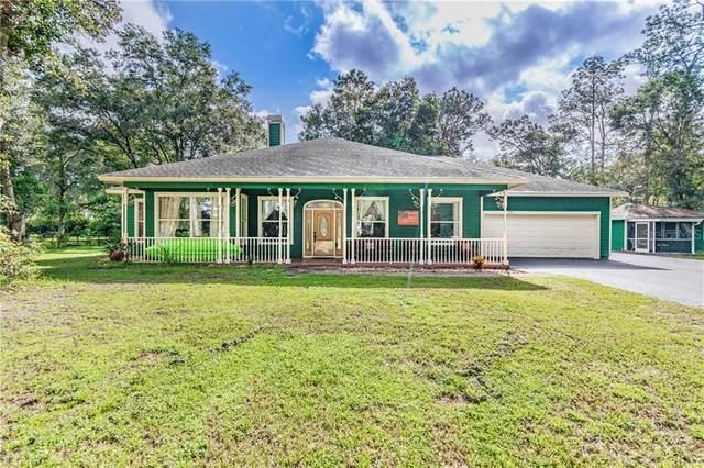 18801 Livingston Avenue, Lutz, FL 33559 (MLS #T3265759) :: Team Bohannon Keller Williams, Tampa Properties