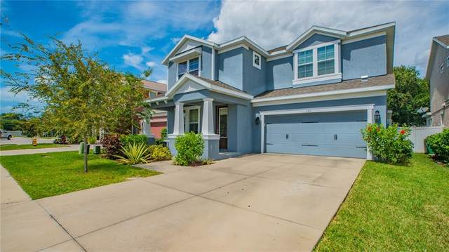 130 Philippe Grand Court, Safety Harbor, FL 34695 (MLS #T3266154) :: Team Borham at Keller Williams Realty