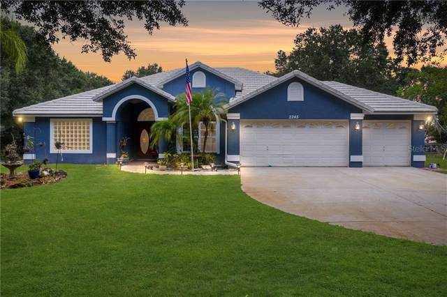 2245 Meadowbrook Drive, Lutz, FL 33558 (MLS #T3266412) :: Rabell Realty Group
