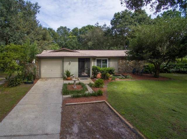 2100 Meadowbrook Drive, Lutz, FL 33558 (MLS #T3266567) :: The Nathan Bangs Group