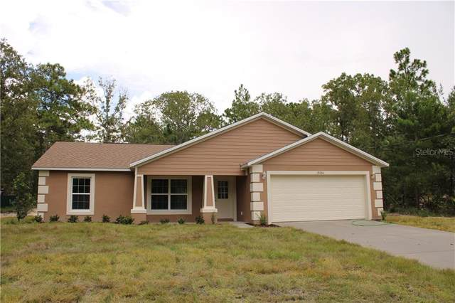 18233 Macassar Road, Weeki Wachee, FL 34614 (MLS #T3266755) :: Heckler Realty