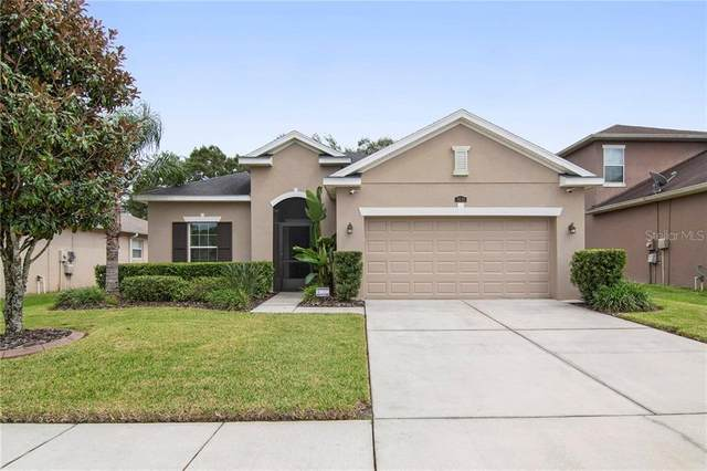 3630 Grecko Drive, Wesley Chapel, FL 33543 (MLS #T3266904) :: The Duncan Duo Team