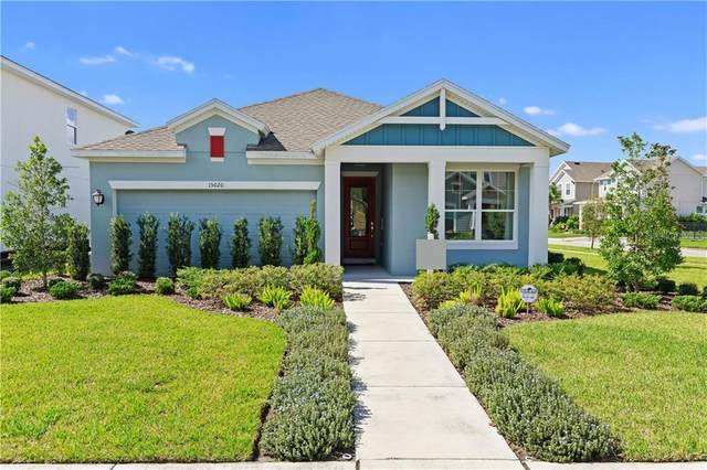 15020 Renaissance Avenue, Odessa, FL 33556 (MLS #T3267432) :: Griffin Group