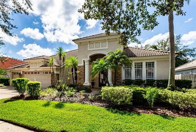 10205 Arbor Side Drive, Tampa, FL 33647 (MLS #T3269473) :: Team Bohannon Keller Williams, Tampa Properties