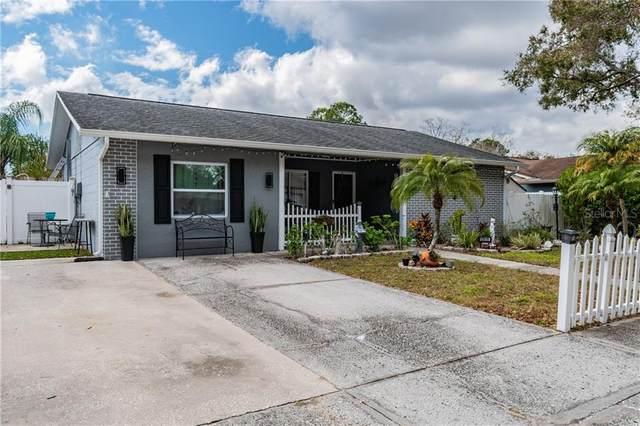 13926 Pathfinder Drive, Tampa, FL 33625 (MLS #T3269851) :: Team Bohannon Keller Williams, Tampa Properties