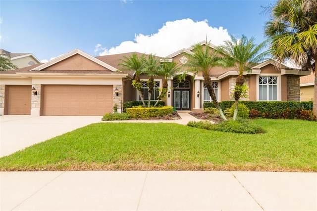 10563 Greencrest Drive, Tampa, FL 33626 (MLS #T3270459) :: Frankenstein Home Team
